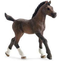 13762 Arabian Foal Schleich Toy Farm Animals