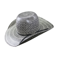 6210 Black/White Two Toned American Hat Company Straw Hat