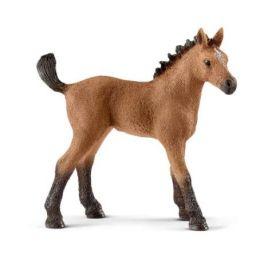 Schleich Quarter Horse Foal Toy 13854