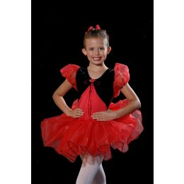 40826 The Gift Recital Costumes