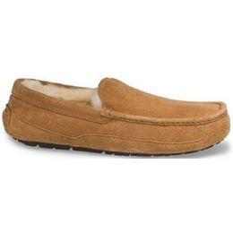 UGG Ascot Chestnut Nubuck Mens Indoor/Outdoor Slipper 5775-CHE