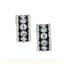 ER1032 Crystal Shine Small Hoop Earrings