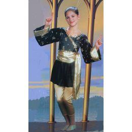 3026  Mulan DANCE RECITAL COSTUME AD