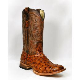 Cowtown Brown Ostrich Print Boots Q6064