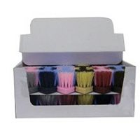 246185 Two Tone 8.5 in Dandy Brush Box - Assorted 12 per box